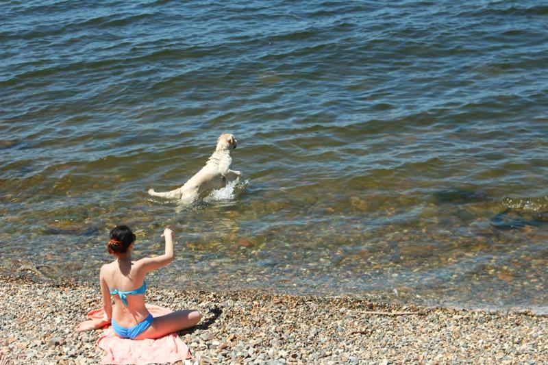пляжи владивостока где можно купаться Добавить отзыв