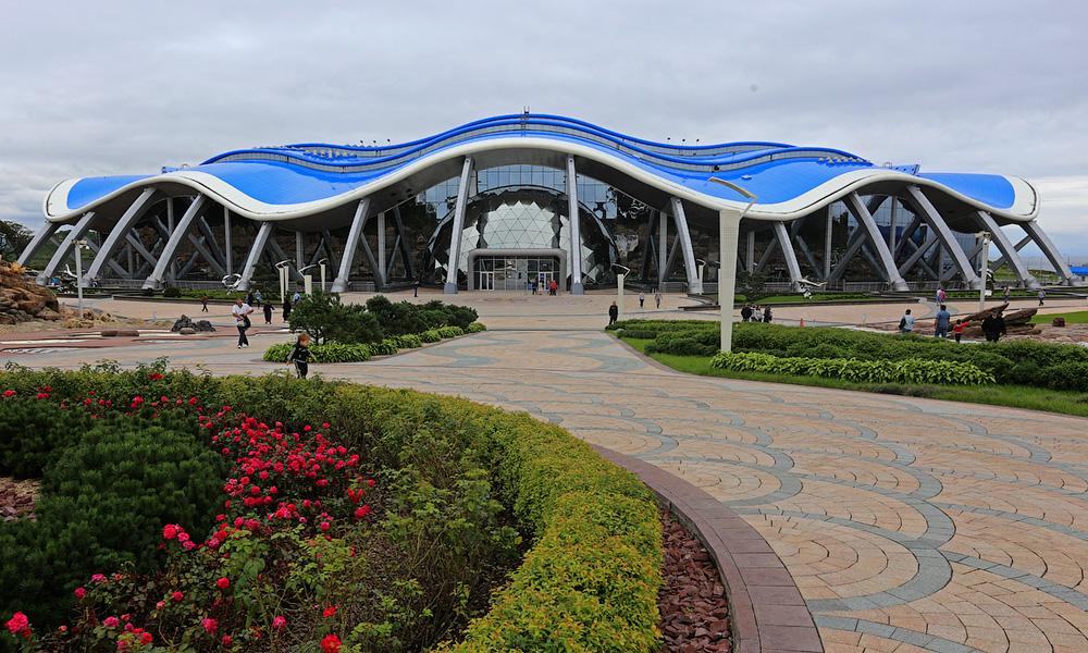 Фото океанариума во владивостоке
