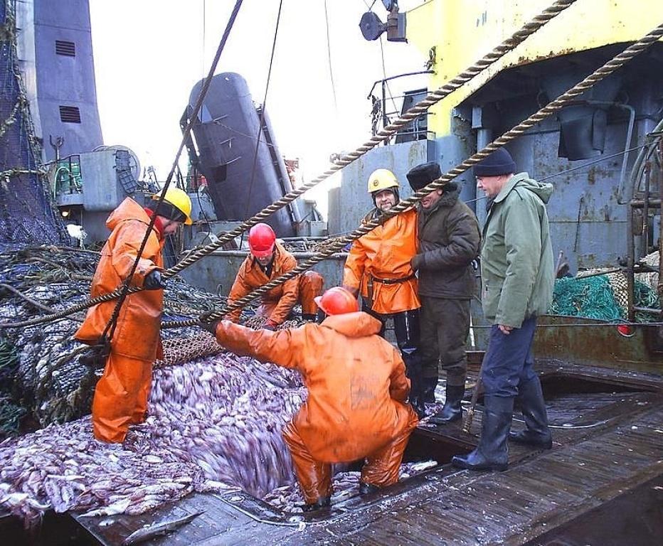 союз рыбаков владивосток