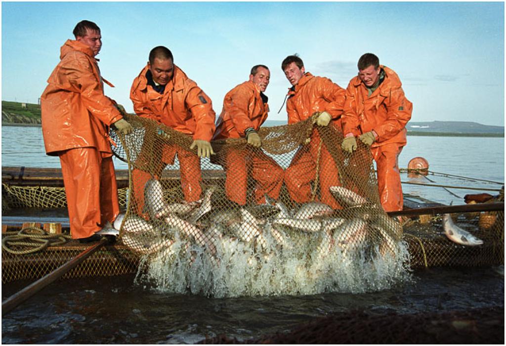 работа рыбаком вакансии вахта