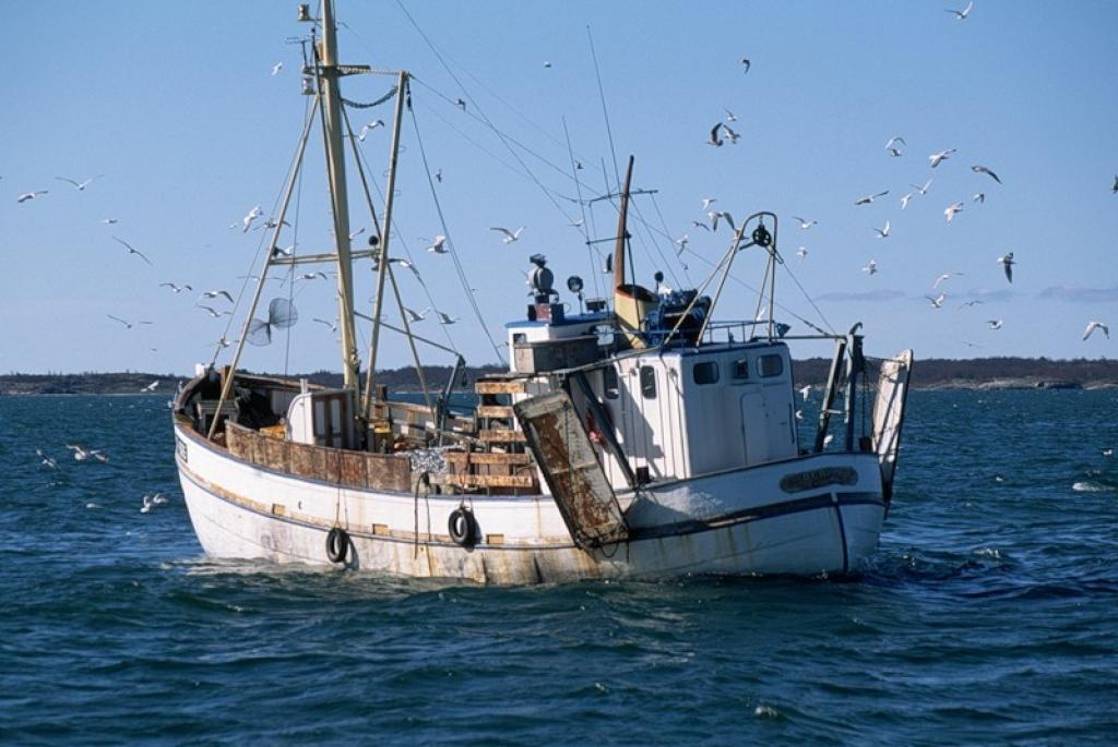 работа на корабле рыболовном вакансии