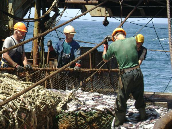 компании владивостока рыбаков