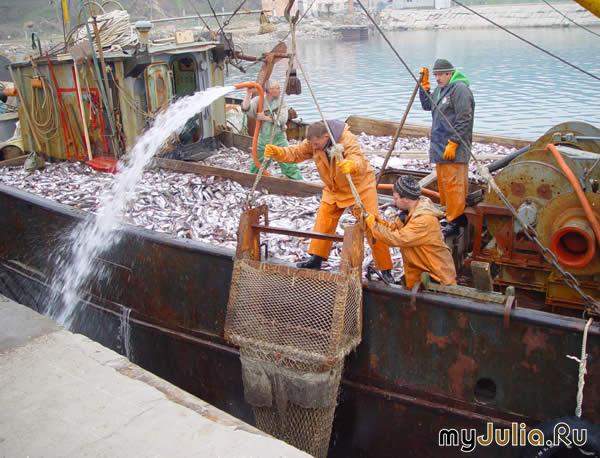 правила рыболовного хозяйства и рыболовства от 05.12.2013