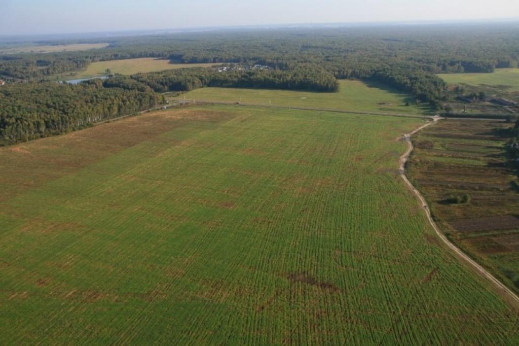 Арендовать землю для сельским хозяйством в чехии