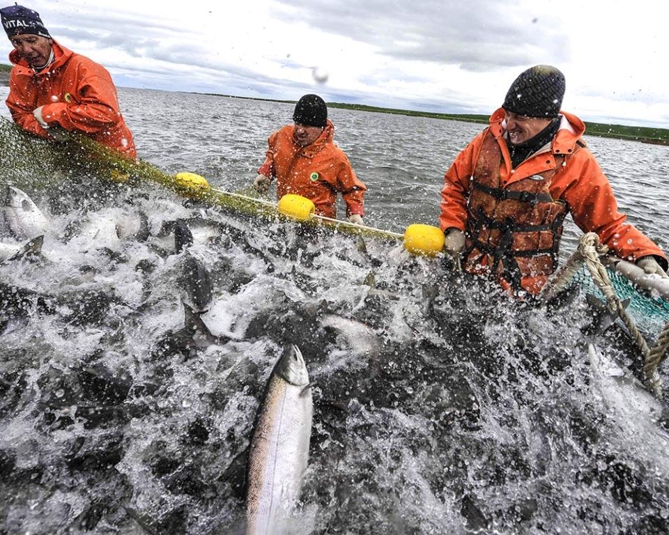 промышленная рыбалка работа