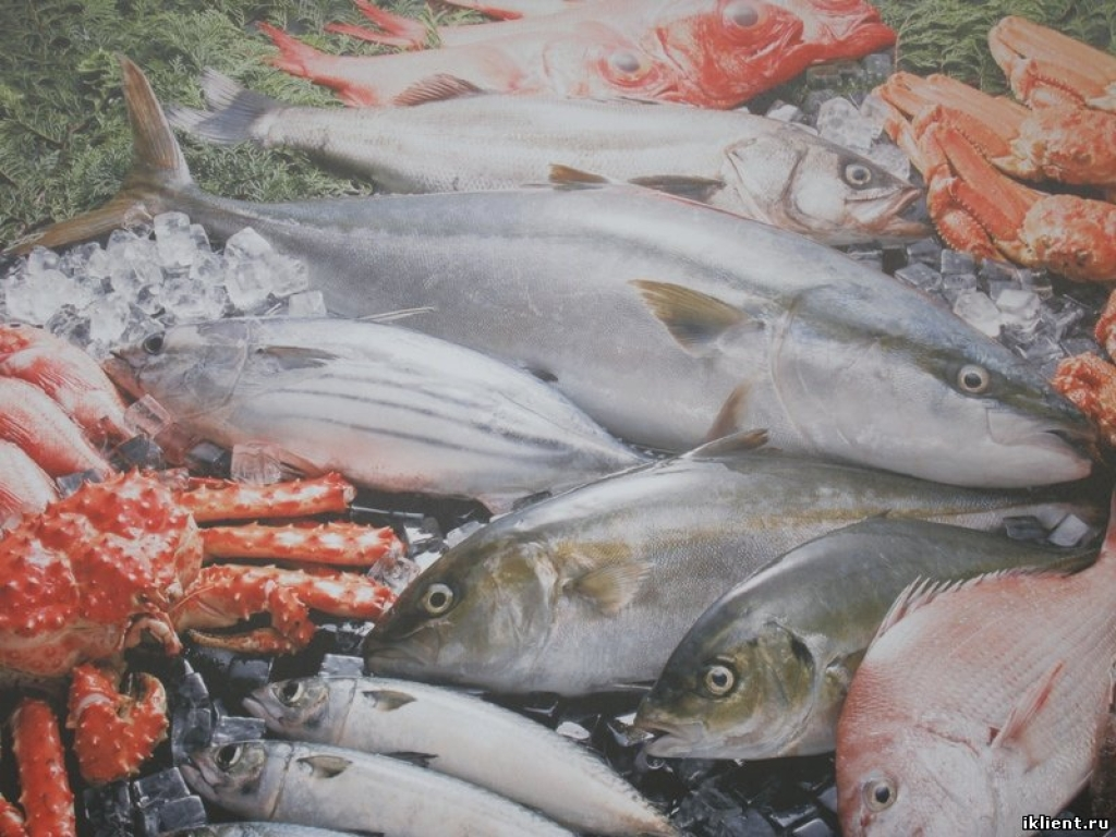 Новости рыбного рынка