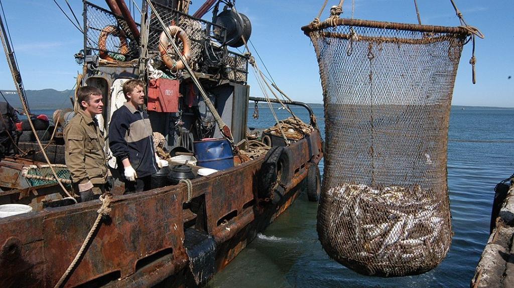 Работа для моряков в приморском крае