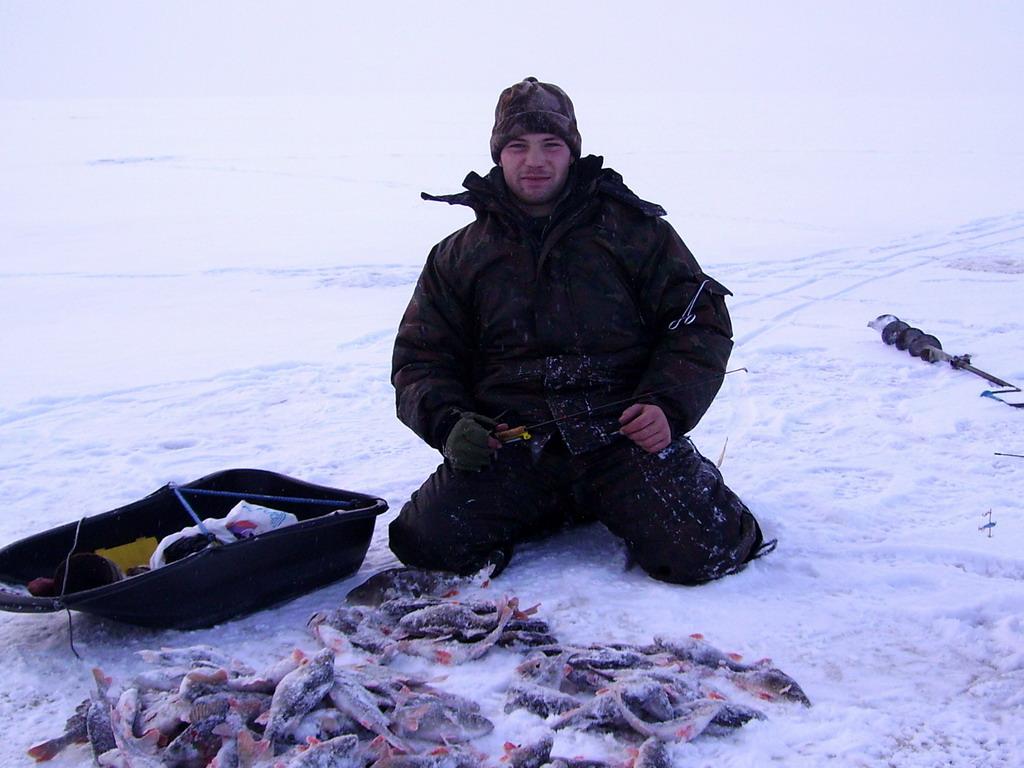 клев рыбы на баево