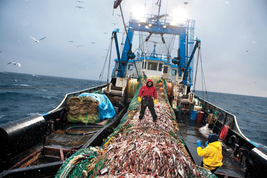 рыбаки на промысле видео