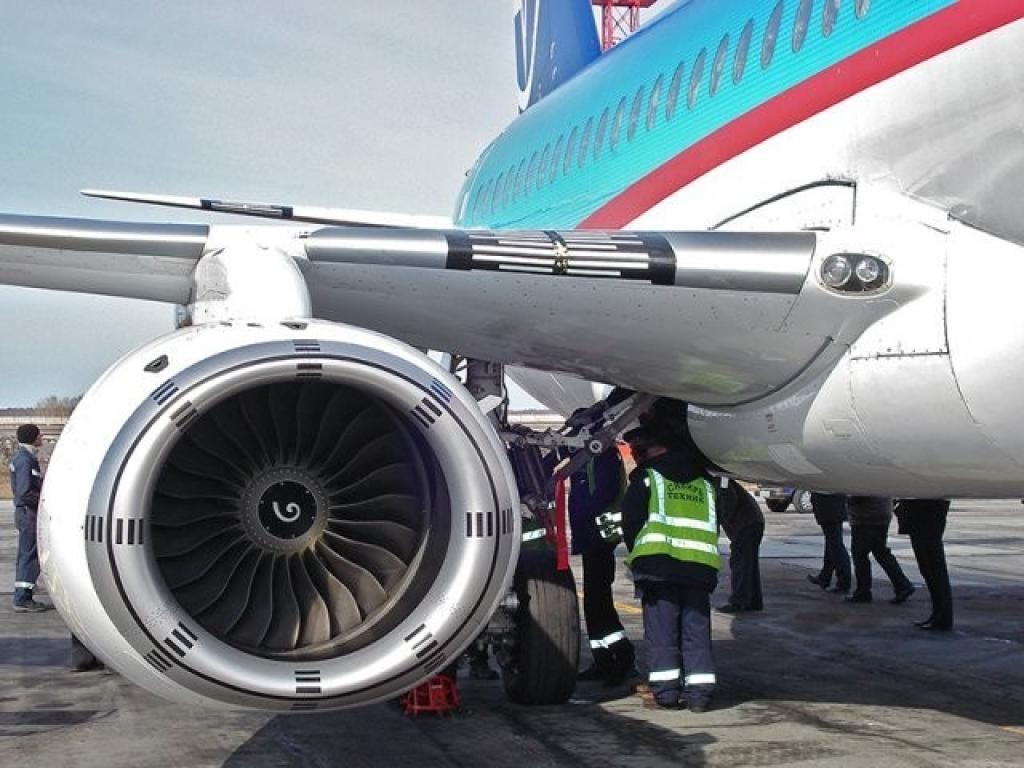 фото б747 птица в двигатель современной