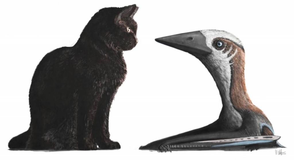 Палеонтологи отыскали останки нового вида птерозавров размером сдомашнюю кошку