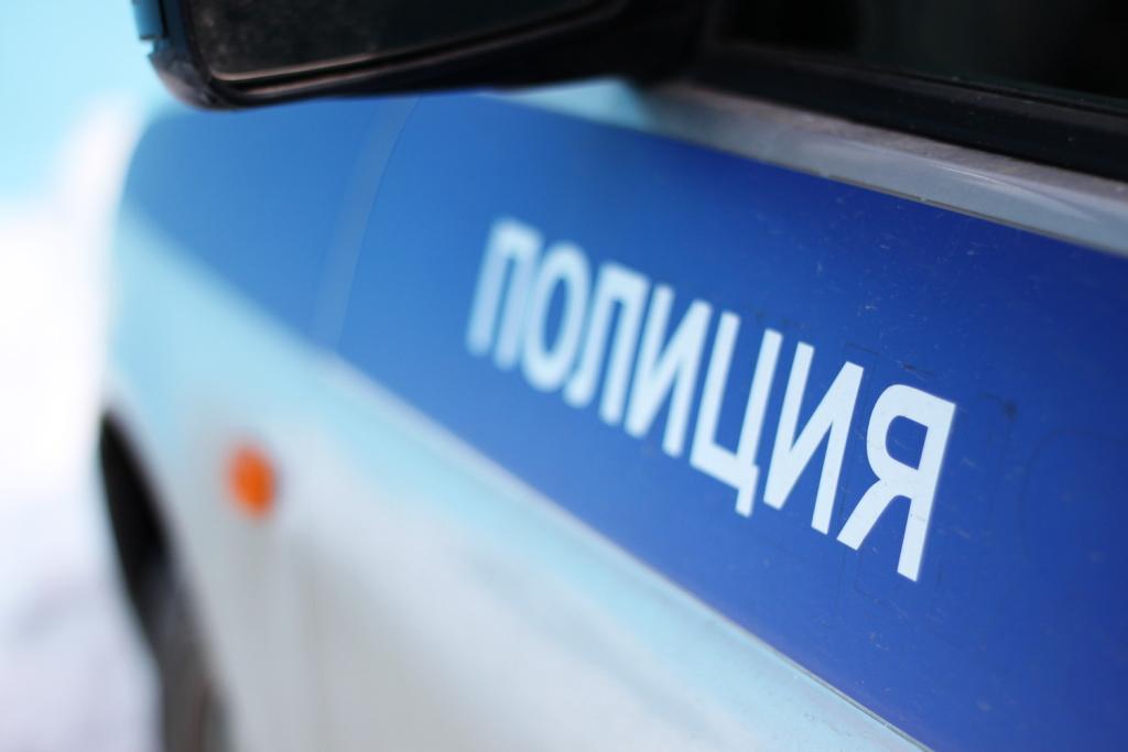 Неменее 3700 полицейских будут обеспечивать порядок вдень выборов наАлтае