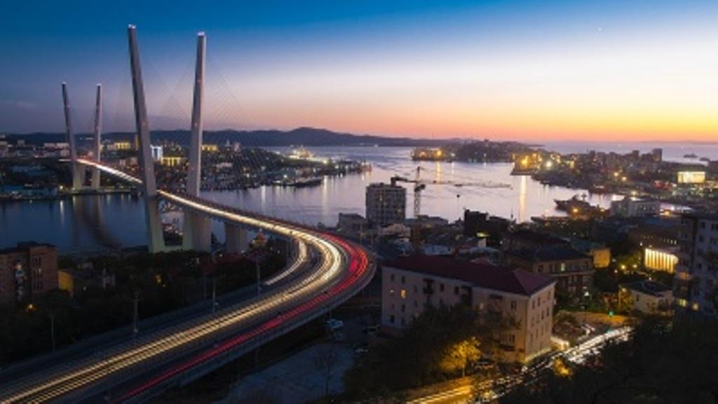 Руководство определило сроки проведения контроля впорту Владивостока