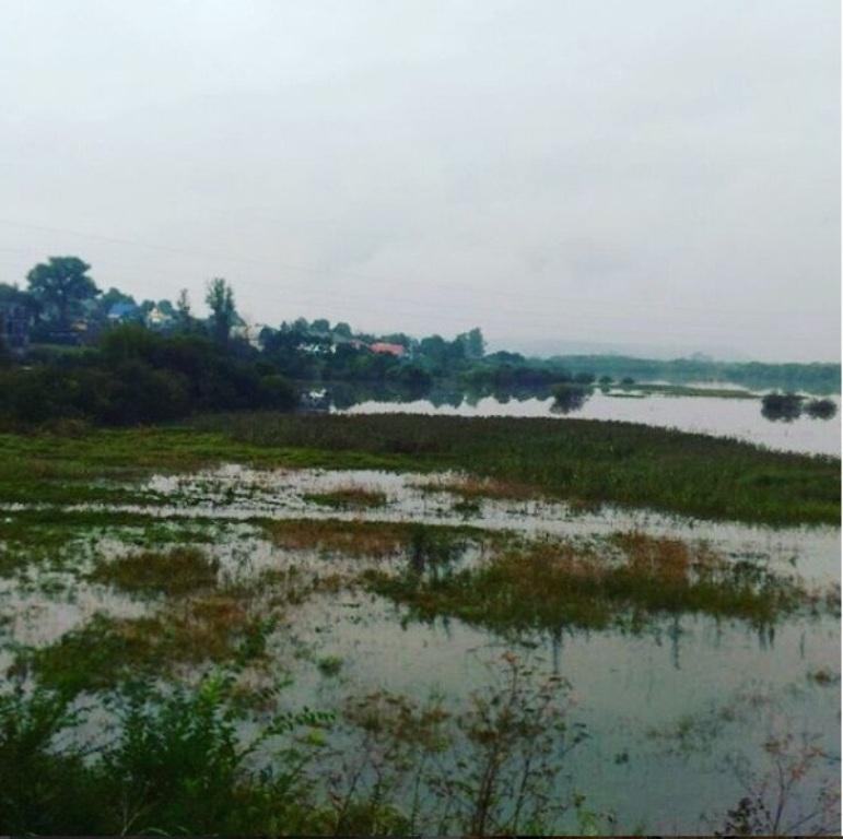Пострадавшие оттайфуна приморцы получили неменее 800 млн. руб.