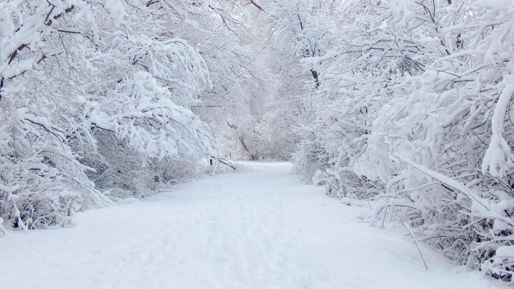 НаЧукотке снежная лавина снесла около 20 опор ЛЭП