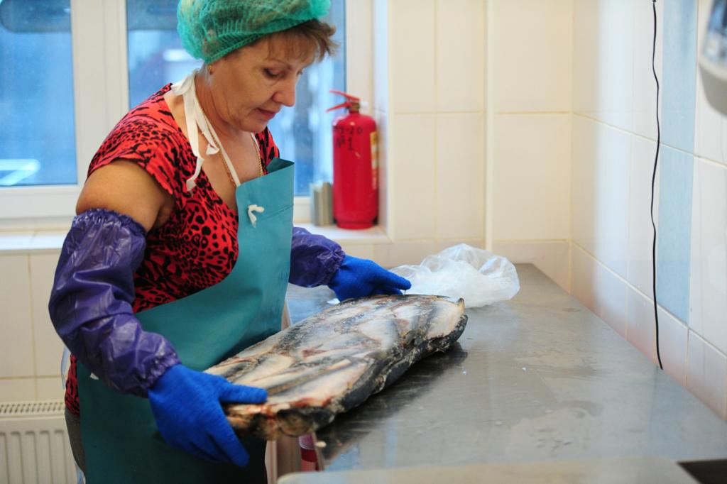 Зоозащитники попросили В.Путина перепрофилировать Приморский океанариум ваквапарк