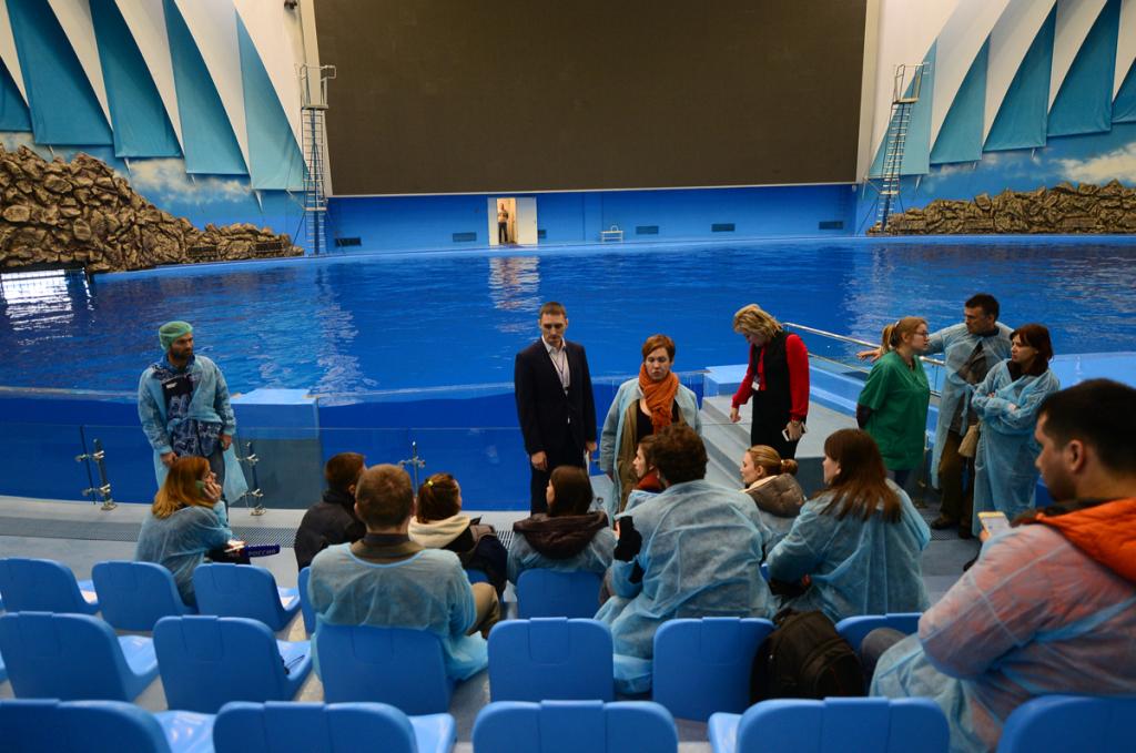 Зоозащитники хотят превратить океанариум воВладивостоке ваквапарк