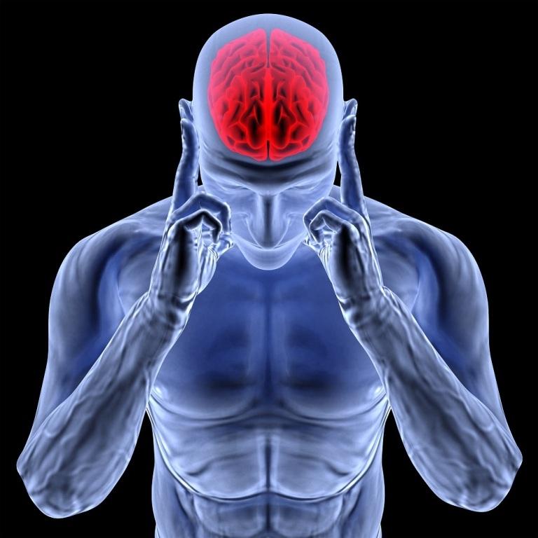 Ученые: мозг человека может делиться начасти