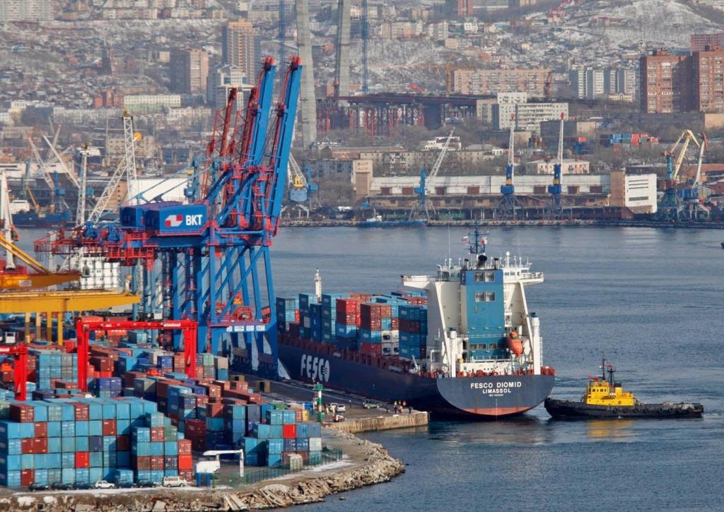 Государственная дума приняла закон обезвизовом режиме вСП Владивосток
