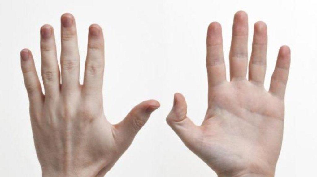 Ученые: Если указательный палец короче безымянного, точеловек богат