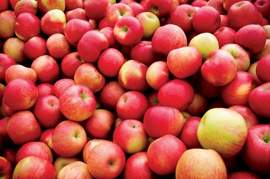 Неменее 9-ти тонн санкционных яблок изъяла милиция Уссурийска