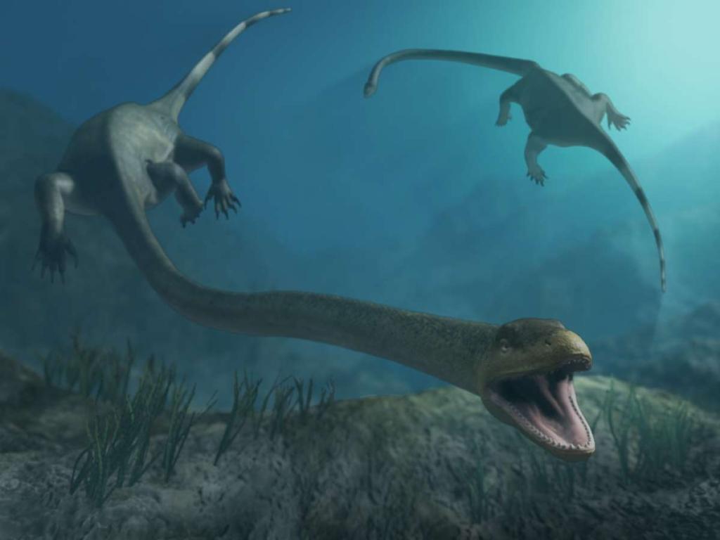В КНР найдены останки беременной «праматери» динозавров