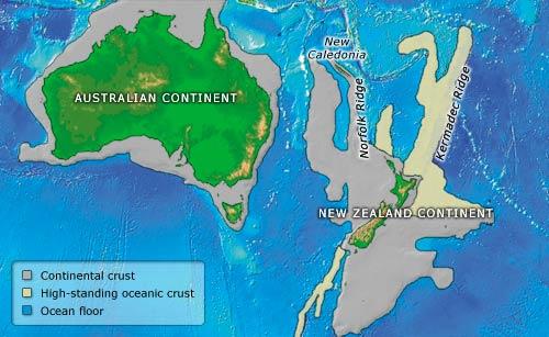 Ученые шокированы размером пингвина-ровесника динозавров