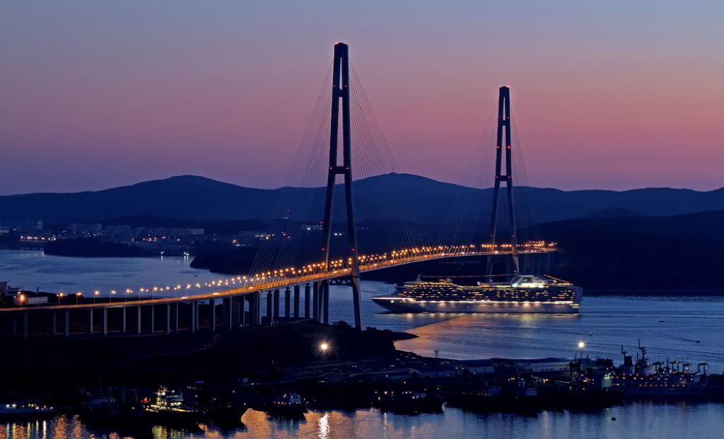 Сенаторы одобрили выдачу электронных виз для свободного порта Владивосток