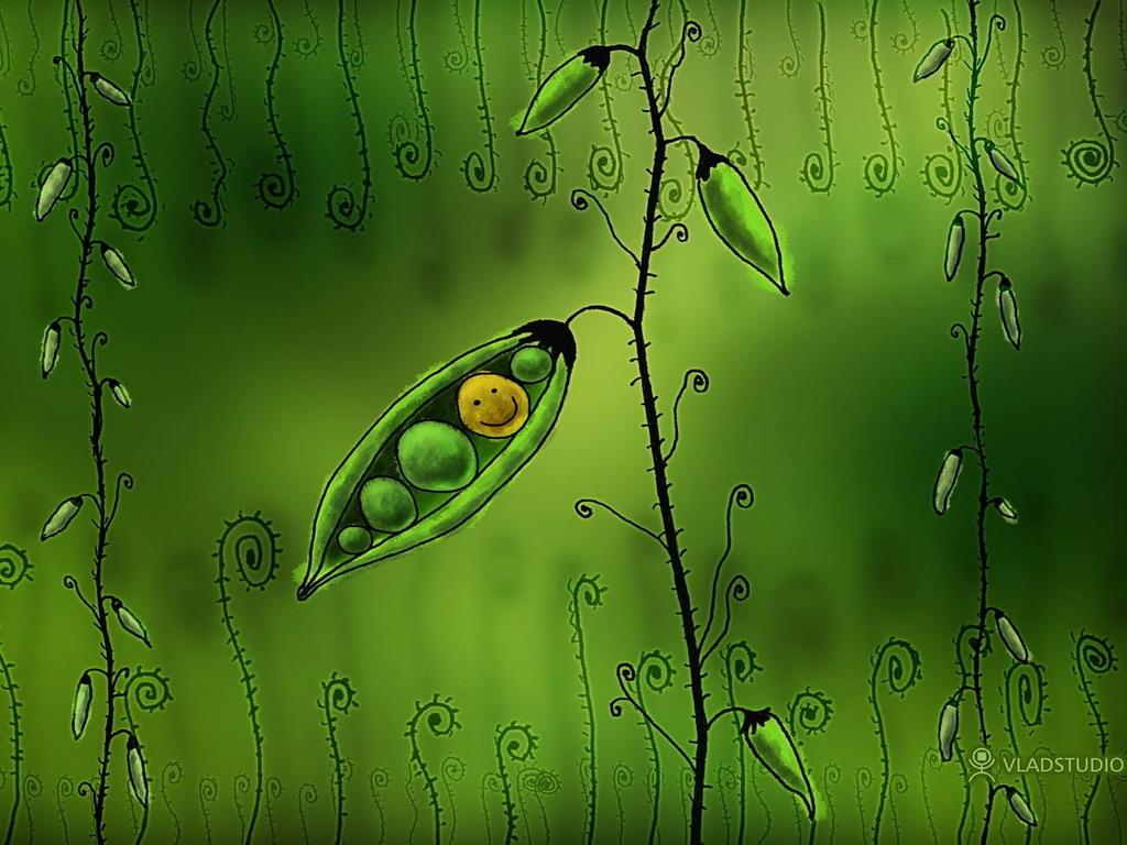 Растения обнаруживают воду наслух— Ученые