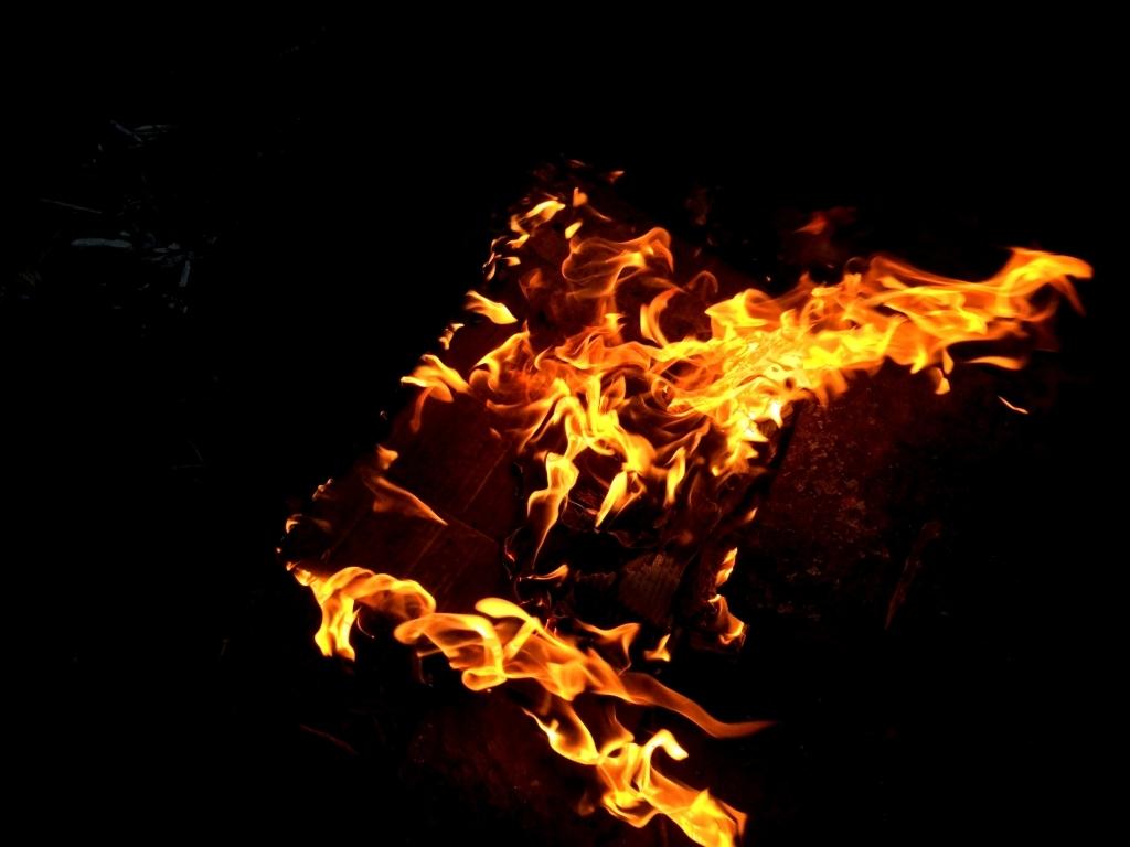 Около 1,3 тыс. галеса выгорело засутки на далеком Востоке