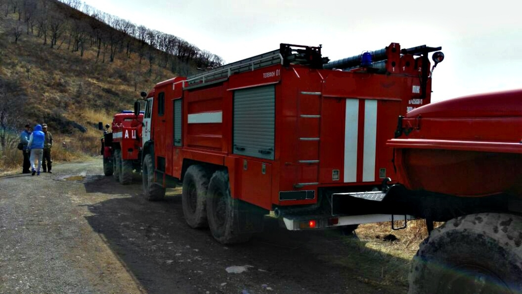 ВПриморье ликвидированы все лесные пожары