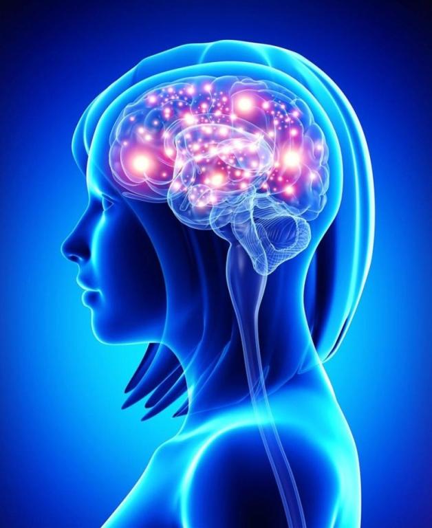 Ученые поведали, как возраст влияет насерое вещество мозга