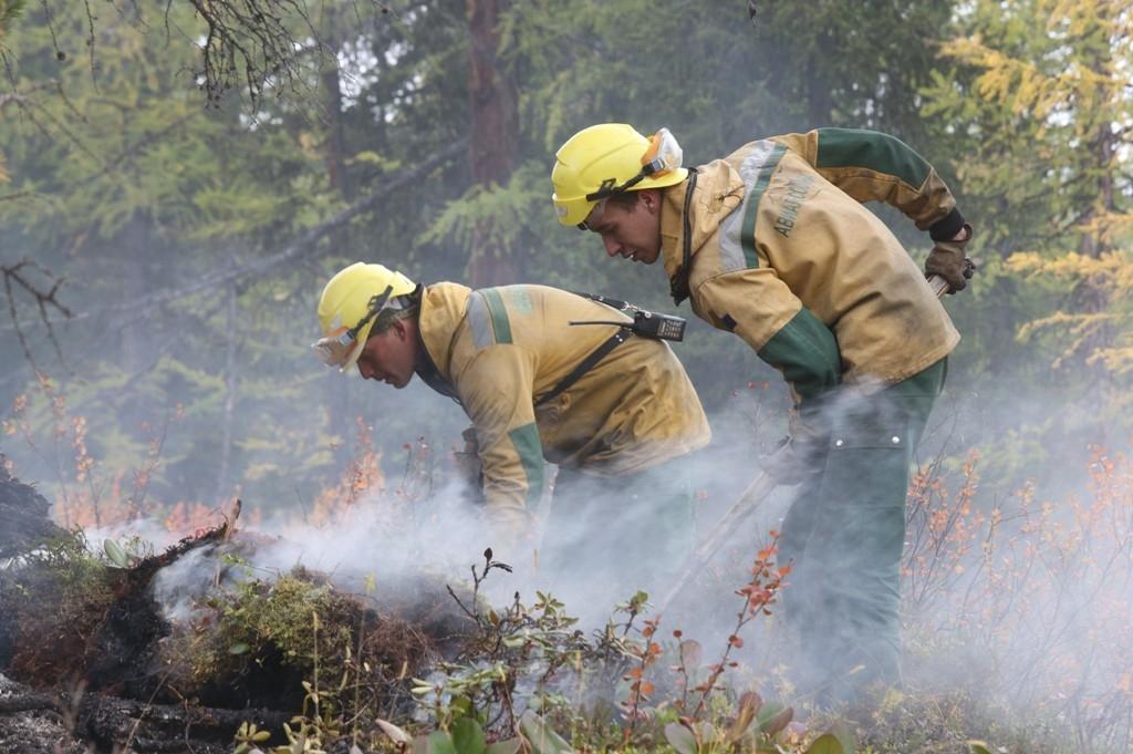 Веще одном районе Приморья ввели режимЧС из-за лесных пожаров