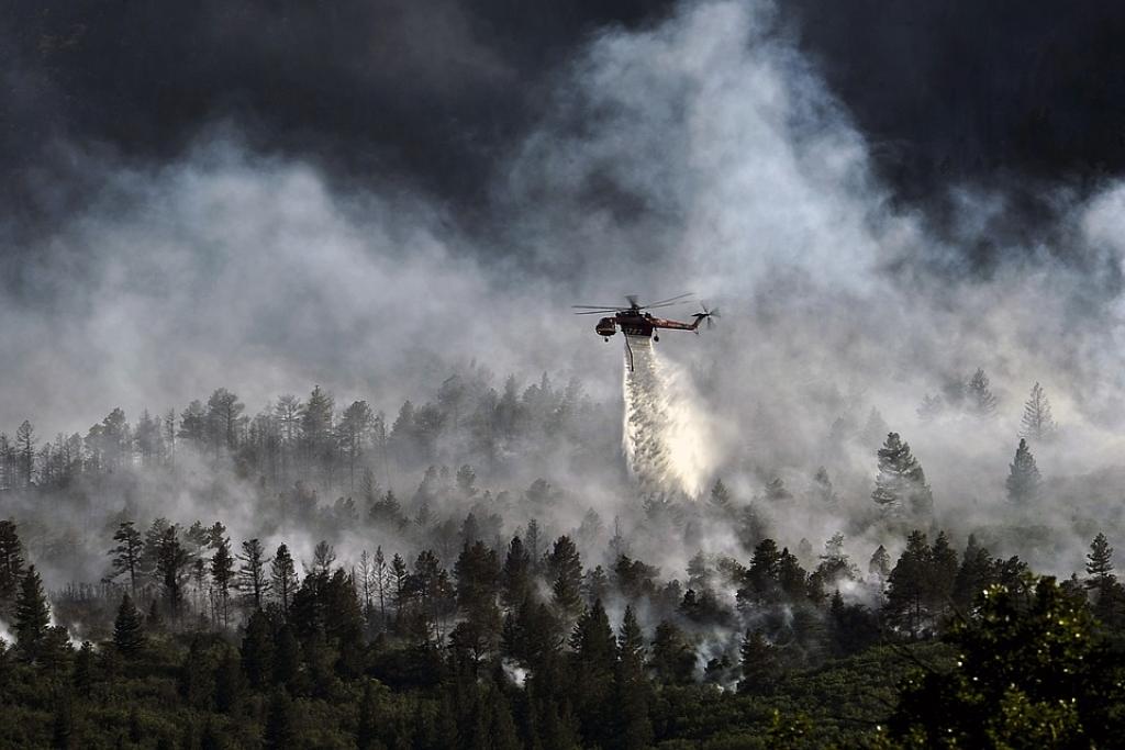 ВПриморье засутки потушили лесные пожары наплощади неменее 200 гектаров