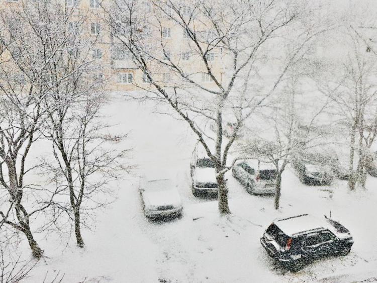 Погода вПриморье на15ноября