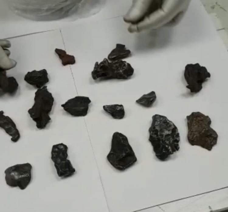 Житель Китайская народная республика пытался вывезти изПриморья вКитай фрагменты Сихотэ-Алинского метеорита