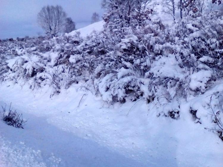 Снег пройдет вПриморье вчетверг