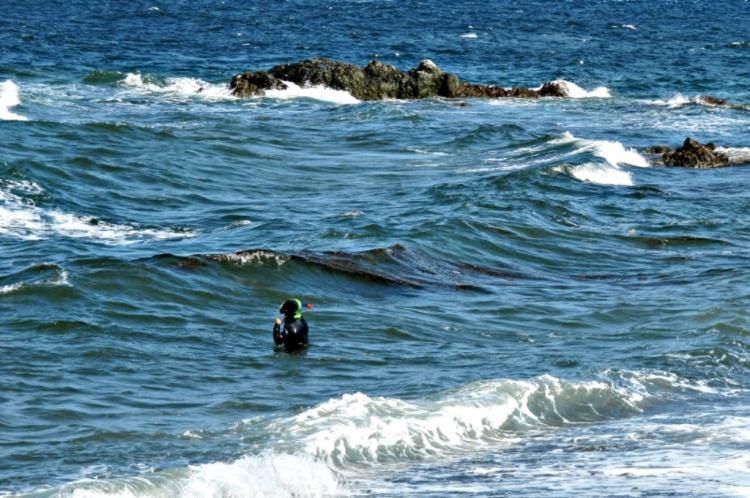 ВПриморье cотрудники экстренных служб и милиция ищут пропавшего аквалангиста