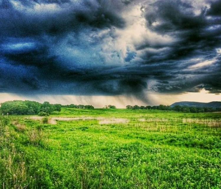 Жители России подали практически 110 тыс. заявок на«дальневосточный гектар»