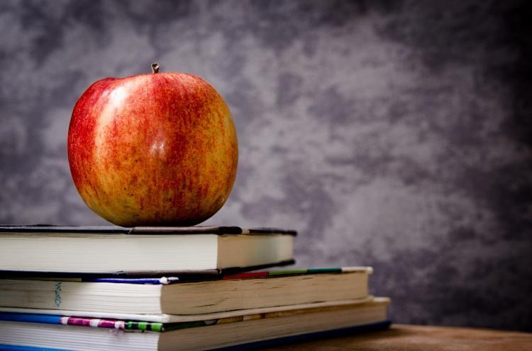 ВПриморье учительницу наказали зачтение нецензурных стихов науроке— Литературный скандал