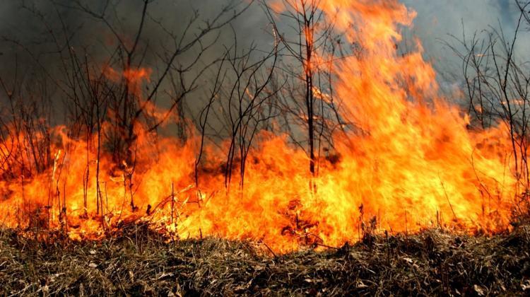 Особый противопожарный режим введен вПриморье