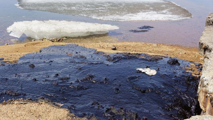 Берега Амурского залива «омывают» нефтепродукты. Владивосток просит Минобороны посодействовать вочистке
