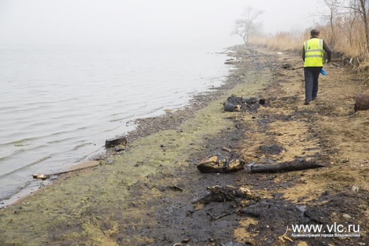 Мэрия Владивостока просит Минобороны очистить отразлива нефтепродуктов побережье Амурского залива