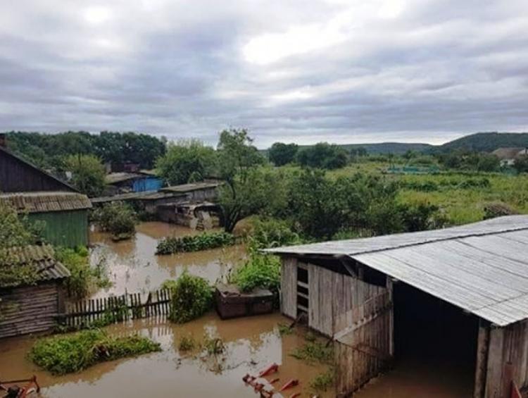 интерьер доме село невское приморский край фото дополняла