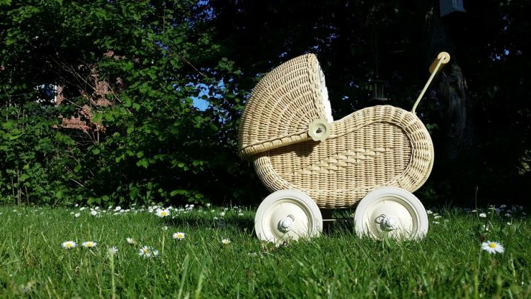 baby-carriage-798775_960_720.jpg