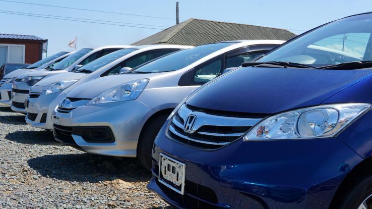 В России в 1,5 раза выросли продажи новых электромобилей