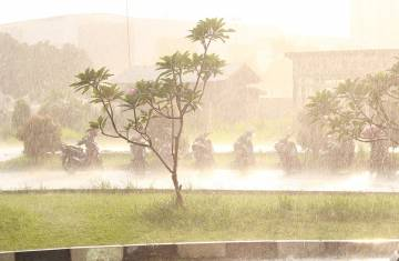 downpour-1856418_960_720.jpg