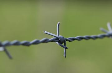 barbed-wire-2797302_960_720.jpg